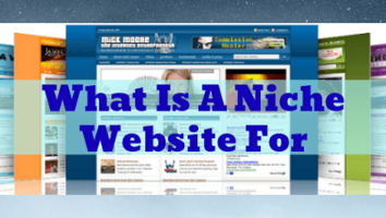 What Is A Niche Website For Post Title